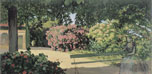 En mi jardín