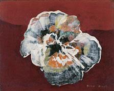 Flower-Shell, Max Ernst