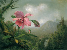 Orchid and Hummingbird near a Mountain Waterfall, Martin Johnson Heade
