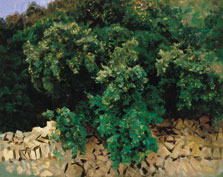 Ilex Wood. Majorca, John Singer Sargent