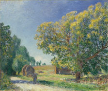 A Forest Clearing, Alfred Sisley